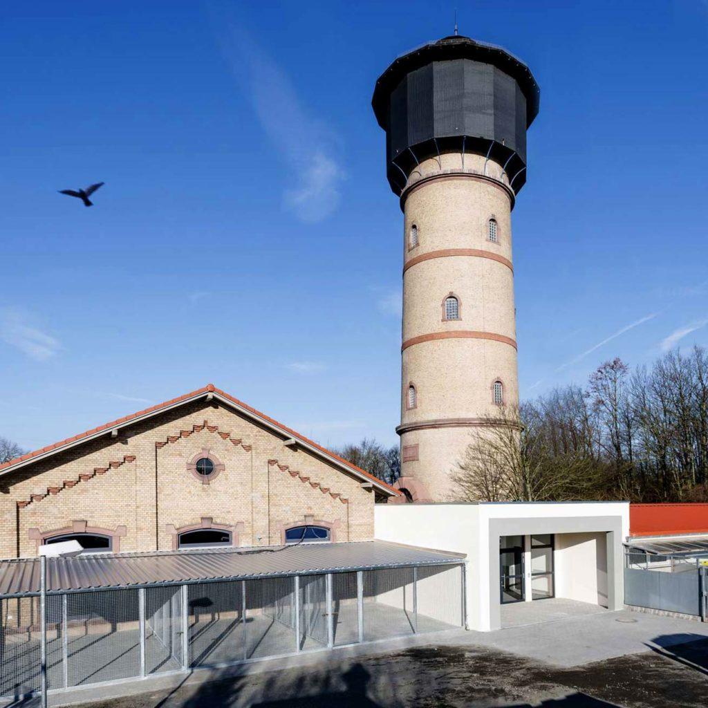 Hanau – Erweiterung Tierheim – Gerstner Kaluza Architektur Frankfurt